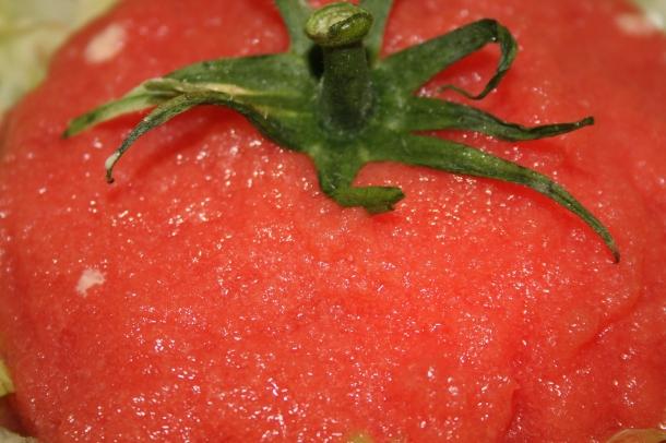 tomates revisitées 020